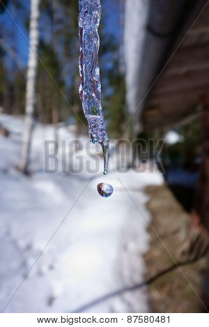 Icicle as exclamation mark