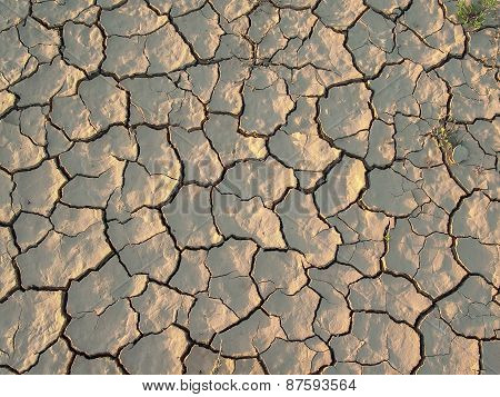 Cracked And Dried Earth Texture