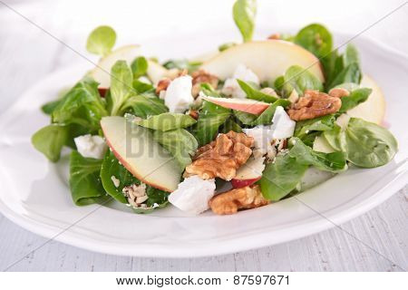 salad with apple,walnut and cheese