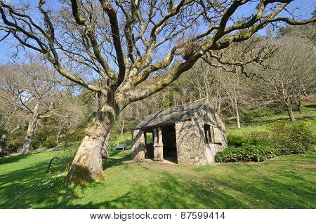 Garden Outhouse