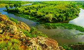 picture of vegetation  - river and vegetation in rural areas the spring season - JPG
