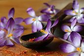 stock photo of saffron  - Dried saffron spice and crocus flowers on table - JPG