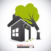 picture of fallen  - Fallen Tree Home Insurance design over white background - JPG