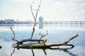 stock photo of dnepropetrovsk  - Dnepropetrovsk view of the city and the bridge with the Dnieper River - JPG