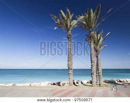 Bat Galim Promenade. Galshanim Beach. Haifa. Israel. Of Bat Galim Promenade. Galshanim Beach. Haifa.
