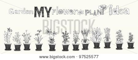 Flower Plant Pencil Art Line