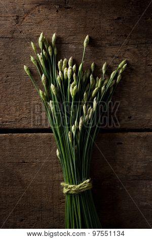 fresh spring garlic on a wood background