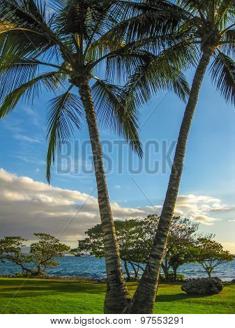 Waipuilani Park Maui