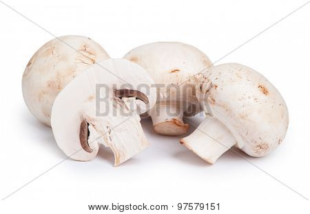 Champignon mushrooms isolated on white background