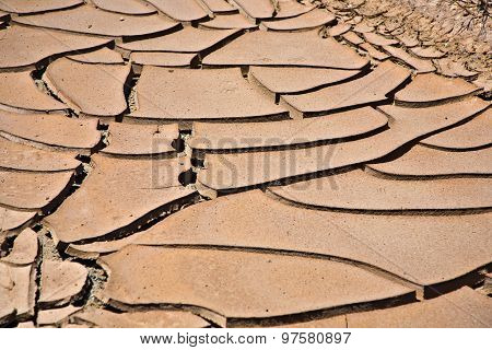 Dried And Cracked Mud