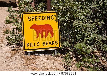 Danger Sign, Speeding Kills Bears In Yosemite National Park