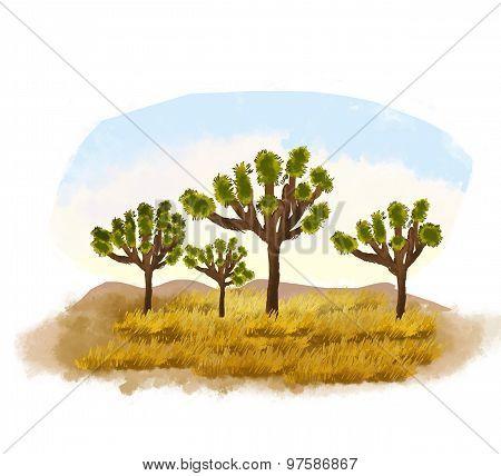 Joshua trees Illustration