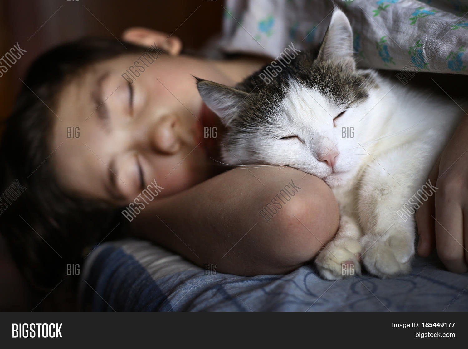 And Cat Sleeping Teen 85