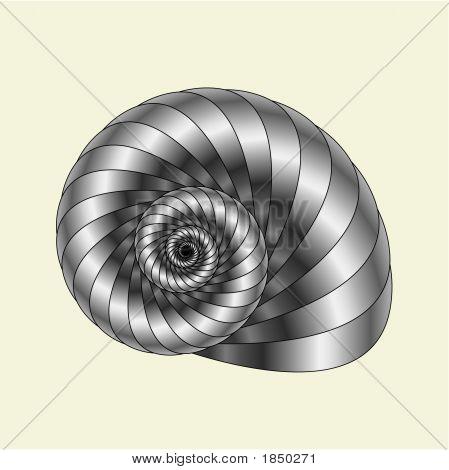 Shell12.Eps
