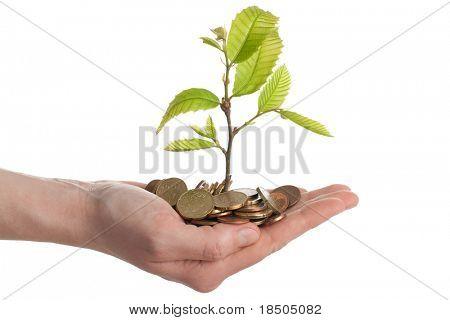 Crecimiento de la inversión