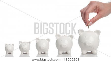 Growing Investment - Piggy Bank on a white background