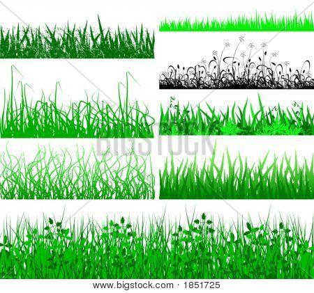 Flecos de hierba