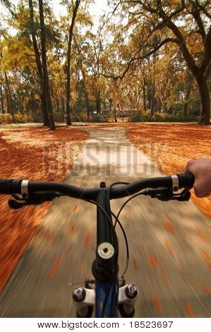 bicycling through autumn leaves with motion blur