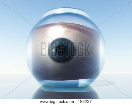 Eye In Goldfish Bowl