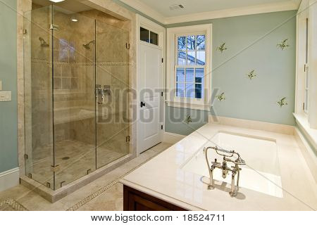 luxury bathroom with glass shower and whirlpool tub