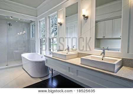modern spacious white bathroom with dark wood floors