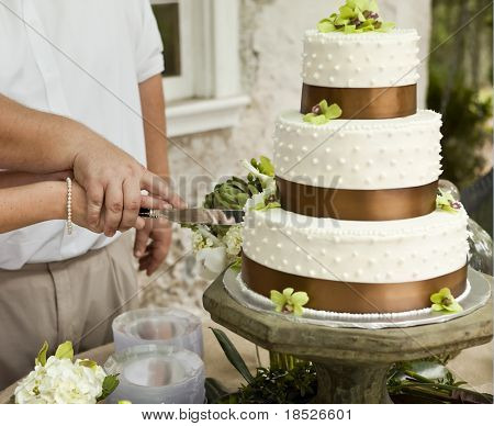 cutting wedding cake, focus on hands
