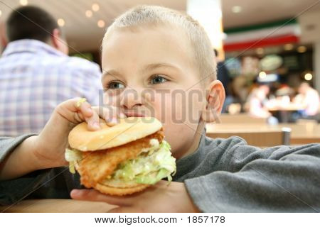 Boy Eats The Sandwich