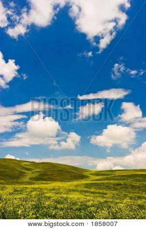 Blühenden Landschaft