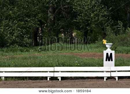 Dressage Alphabet: M