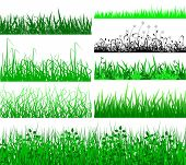 picture of lawn grass  - Selection of vector grassy verges and foregrounds - JPG