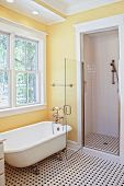 stock photo of clawfoot  - classical style bathroom with clawfoot tub and shower - JPG