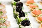 picture of crudites  - Delicious snacks served on a platter with cucumber and cheese toast and salmon and eel - JPG