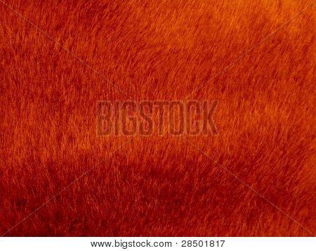 Orange Ferro