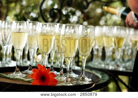 A Tray Of Champagne