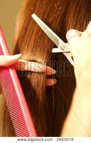 Female Hair Coloring At A Salon