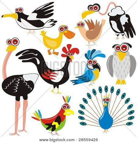 VECTOR - Birds Set - (Peacock, Rooster, Crow, Duck, Ostrich, Parrot, Dove, Eagle, Owl, Gull) - Cartoon Character - These different animals are drawn in cute design - Multi-use illustration