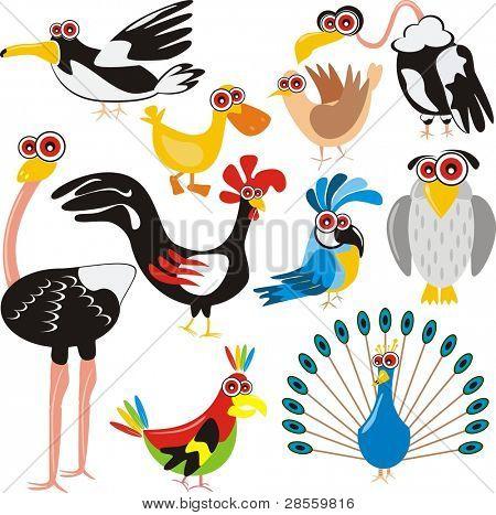 Características de desenhos animados de conjunto-(pavão, galo, Crow, pato, avestruz, papagaio, pomba, águia, coruja, gaivota) - aves
