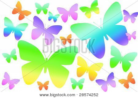 Rainbow Butterflies On White Background
