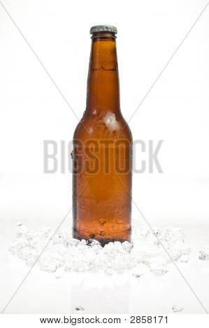 Bottle Of Beer Standing In Ice