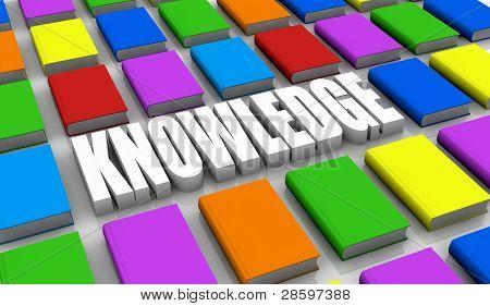 Konzept des Wissens