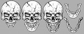 Detailed Graphic Realistic Cool White Human Skulls With Sharp Canines, Cracks And Lower Jaws. On Gra poster
