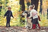 Children Training Dog In Autumn Forest. Little Girl And Boy Friends Play With Husky Pet In Woods. Fr poster