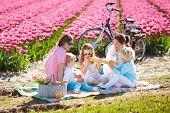 Family Picnic At Tulip Flowers Fields In Holland. Young Mother And Children Eating Lunch In Blooming poster
