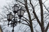 Vintage Tall Tall Road Lamp Winter Rustic Retro Look Tree Sky Winter poster