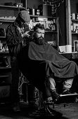 Barber With Clipper Trimming Hair On Nape Of Client. Hipster Client Getting Haircut. Hipster Hairsty poster