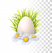 Egg, Grass And Flowers poster