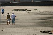 Old Couple Walking On Beach poster