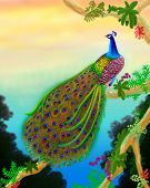 stock photo of peahen  - Airbrush drawing of a male peacock in the jungles of Asia - JPG