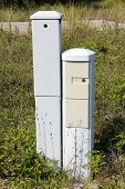 Two Narrow Tall Light Grey Locked Electrical Boxes Surrounded With Tall Uncut Grass And Other Vegeta poster