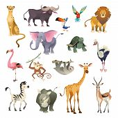 Jungle Wild Animals. Savannah Forest Animal Bird Safari Nature Africa Tropical Exotic Forest Marine  poster